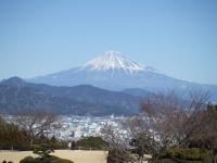 日本平ホテルから富士山を望む、手前は清水港
