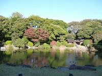 東京国立博物館裏庭の池に映る紅葉