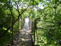 二つのエリアを結ぶ道には吊り橋があります。