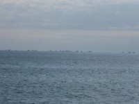 海の方向に下りると漁船がたくさんいて美しい風景
