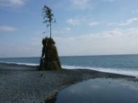 9日はどんど焼・地元の人が海辺に竹を使って燃やすところをたくさん用意