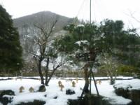 ホテルからの雪景色