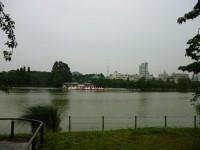 上野不忍池・ボート池から見たスカイツリー